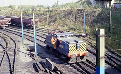 Westoe St Hilda sdgs 12 a645 (Ernies Railway Archive) Tags: hartoncoalcompany westoe ncb southshields