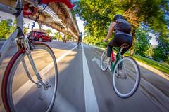 Bike Ride 188/365 (stevemolder) Tags: bike ride lake street chicago 365 8mm fisheye canon