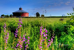 Round Barn (Tom Mortenson) Tags: wisconsin landscape barn roundbarn wausauwisconsin marathoncounty country rural digital geotagged tonemapping hdr photomatix canon usa america northamerica centralwisconsin canoneos canon6d wildflowers farm 1740l colorful summer scenery scenic midwest brokawwisconsin
