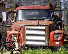 Third times the charm. (Brendinni) Tags: htt happytruckthursday washington skagitvalley international truck