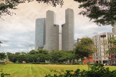 Rochor, Singapore (cattan2011) Tags: 新加坡 building architecturephotography architecture traveltuesday travelphotography travelbloggers travel naturelovers natureperfection naturephotography nature landscapephotography landscape rochor singapore