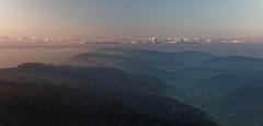 Alps in the morning glow (eichlera) Tags: mountains alps hills sunrise sun sunlight morning sky zurich switzerland uetliberg felsenegg