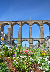 15MorlaixViaductPortrait (geomappingunit) Tags: brittany 2018 fieldtrip geography viaduct morlaix flowers