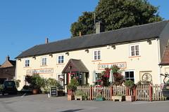 The Golden Pheasant Lower Farringdon Hampshire UK (davidseall) Tags: the golden pheasant pub pubs inn tavern bar public house houses lower farringdon hampshire uk gb british english village country gbg gbg2016