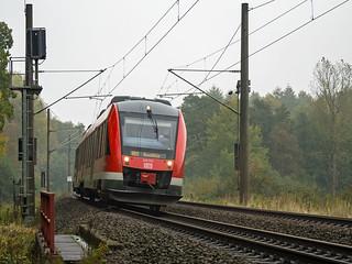 Brunstorf Wald RB 21864 648 332832 a