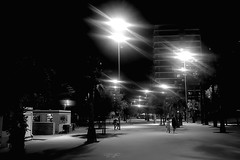 Badaloneando: Night walk (Fn2street) Tags: street people light tree palmtree bar chiringuito building architecture night nightshot nightview blackandwhite monochrome outdoor