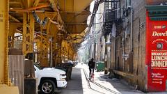 - Chicago's El - (Jacqueline ter Haar) Tags: el cta theblueline chicago elevated