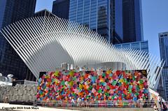 You Can't Hide Everything (Trish Mayo) Tags: oculus calatrava murals art streetart hektad