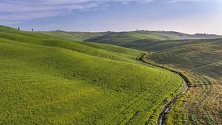*Tuscany @ Spring fields*