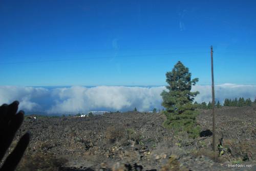 Понад хмарами, Тенеріфе, Канарські острови  InterNetri  003
