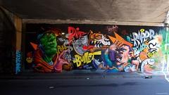 IMGP5427 Pitbull Pitbullet (Claudio e Lucia Images around the world) Tags: street art via pontano padova viale monza milano murales graffiti ferrovia milanese pentax pentaxk3ii sigma sigma1020 pittura face faccia murale persone muro ritratto auto pitbull pitbullet