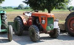Same DA 25 B DT Trento Stradale (samestorici) Tags: trattoredepoca oldtimertraktor tractorfarmvintage tracteurantique trattoristorici oldtractor veicolostorico da25 30