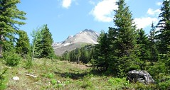 Near & Far K Country Alpines (Mr. Happy Face - Peace :)) Tags: art2018 wilderness forest alpines trees meadows scenery sky cloud landscape hiking albertabound cans2s summer alberta canada nature environment