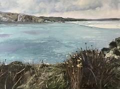 "Coastal Path - Oil on Board 16 x 12 "" - available (www.sandragraham.co.uk) Tags: seascape sea seaside wales pembrokeshire coast coastal path oil painting art artist artists british contemporary south"