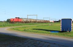 DB Cargo 6416-6463 @ Herxen (Sicco Dierdorp) Tags: db dbc cargo serie6400 ketelwagen keteltrein unitcargo omleiding onnen kijfhoek herxen ijssellijn wijhe zwolle deventer