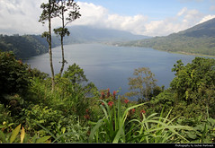 Danau Buyan, Bali, Indonesia (JH_1982) Tags: danau buyan lake landscape nature scenery natur landschaft see mountains mountain plants trees flowers bedugul crater krater pflanzen vegetation hiking view aussicht jalan raya wanagiri bali 巴厘岛 バリ島 발리섬 бали indonesia indonesien indonésie 印度尼西亚 インドネシア 인도네시아 индонезия