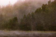 SAM_2929 (Apostol Dragiev) Tags: родопи rodopimountain rodopi mountain forest fog sunrise beglika malakbeglik