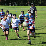 Petersham u8_3