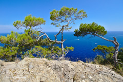 Amazing view (Fabrice H. - Photography) Tags: spanje espana spain landscape superbe super tour toren torre awesome explore talaia albertcutx watchtower watchingtower stones sky skypic blue tower uitkijktoren nature sea high mallorca 2018 pollença attraction monument old formentor amazing uitzicht island balearics baleares islas grass rocks outview view boat ocean water wildlife natural mountain rock vacation holiday