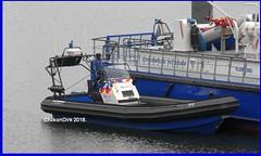 Dutch Seaport Police P8. (NikonDirk) Tags: p4 p6 p7 p8 p9 p14 p18 rhib police politie rotterdamrijnmond harbor nikondirk nederland netherlands holland nikon cop cops hulpverlening zeehavenpolitie zee haven dutch seaport border rivierpolitie zeehaven zhp rivier rvp waterpolitie water foto harbour patrols port marine maritime nautical tp bay constables river boot boat