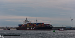 MSC Sena (frisiabonn) Tags: vehicle ship water wirral liverpool england uk britain marine vessel river mersey merseyside sea shore waterfront maritime boat outdoor msc sena container cargo l2 liverpool2 dock harbour kotug smit zeebrugge donau