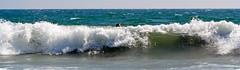 Lost Opportunity ('SeraphimC) Tags: ocean california beach water delete10 canon delete9 person 350d delete2 losangeles surf waves pacific delete6 delete7 santamonica wave delete8 delete3 save save2 100mm crap behind rebelxt delete1 vaughn boogieboard willrogers imeandelete deleter5