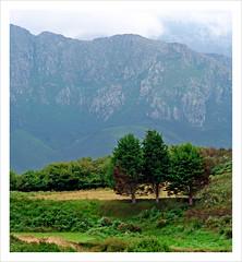 446 (sul gm) Tags: espaa naturaleza mountains verde green nature landscape spain asturias paisaje monte llanes montaas cuera sierradelcuera salgm