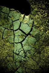Cracks of the Earth (Andrew Hefter) Tags: lake color feet grass digital weeds nikon shoes texas allen earth bottom dry ground brush lucas lakebed drought plano d200 cracks ashlee lavon abigfave
