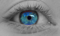 my bright blue eye (Beautiful Beast) Tags: blue color eye beautiful contrast photoshop pair grin acehigh 2pair