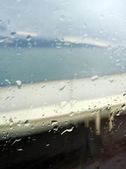 derrière la vitre... - by Mzelle Biscotte