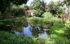 Water Garden, Lotusland