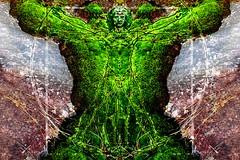 L'homme de vitruve (steve_chabot) Tags: photoshop moss vitruve