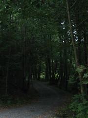 152_5243_r1 (BjrnS) Tags: nature norway publicphoto dmmesmoen