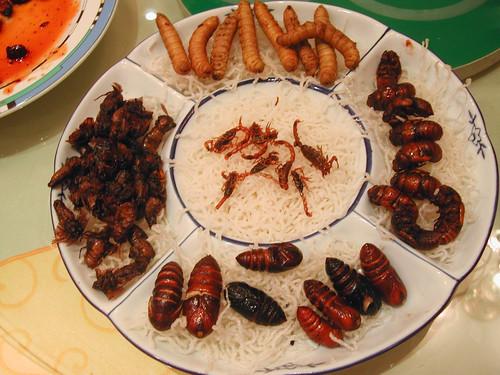 Insectos en China