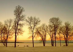 Treeline Skyline (Todd Klassy) Tags: park morning travel trees winter light sunset camp sky orange lake fish snow cold color colour nature beautiful silhouette yellow horizontal skyline wisconsin sunrise landscape outdoors dawn frozen woods colorful warm quiet dusk empty postcard branches nobody visit environment lonely recreation happyholidays treeline wi mothernature dramaticlighting lakefront icefishing clearsky globalwarming winterfun frozenlake noleaves winterweather inarow stoughton stockphotography calendarphoto waitingforsummer countypark colorimage onthehorizon danecounty picnicbenches colorfulsky beautyinnature leaflesstrees closedfortheseason winterrecreation beautifulscene bandsofcolor dramaticcolor winterinwisconsin wisconsinlandscape emptyinthewinter