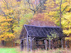 Fall Frame (CountryDreaming) Tags: autumn trees ohio color tree fall leaves barn frames bravo barns frame hockinghills abigfave kkfav