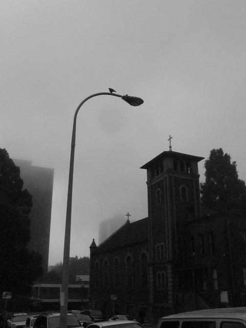 autumn_fog2