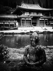 Buddhist Statue, Oahu B&W (descontinue) Tags: ocean sea beach island hawaii coast sand surf oahu wave northshore palmtree tropical pearlharbor honolulu bodyboard top20zen top20zen20