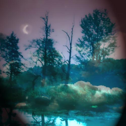 Dream Landscape