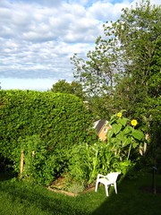 "jardin à craig, geneviève et cie • <a style=""font-size:0.8em;"" href=""http://www.flickr.com/photos/70272381@N00/279481771/"" target=""_blank"">View on Flickr</a>"