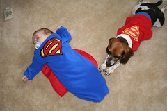 Up Up and Away (cjustice33) Tags: boy dog baby beagle halloween puppy flying buddies pals superman samantha quin upupandaway