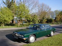 P1010010 (saabfan) Tags: park green sport racing eastbourne british 1991 jaguar hampden xj xj6 6cyl xj40 6cylinder 200hp 200bhp