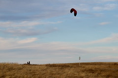 Nose Hill Kite Surfer (Bracus Triticum) Tags: nose hill kite surfer people calgary カルガリー アルバータ州 alberta canada カナダ 12月 december winter 2017 平成29年 じゅうにがつ 十二月 jūnigatsu 師走 shiwasu priestsrun