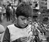 """Mi plantita"" (Dherkos) Tags: plantas niño portrait bn bw inocencia innocence magia urban people niñez amor sublime ternura"