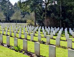 Cologne - Südfriedhof (Martin M. Miles) Tags: köln cologne südfriedhof civilianvictims colognewarcemetery commonwealthwargravescommission cwgc nordrheinwestfalen nrw northrhinewestphalia deutschland germany