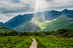 Killarney Sunburst - Explore # 37 (entry) (**capture the essential**) Tags: 2018 bäume clouds forest himmel holiday ireland irland june killarneynationalpark landschaften licht lichtstrahlen light lightbeam lumlook rayoflight sky sonne sonnenstrahlen sonya6300 sonye18200mmoss sonyilce6300 sun sunburst trees trip wald wetter wolken