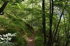 DSC_1818 (gregorv) Tags: slovenia slovenija kum planine mountains mountain nature narava