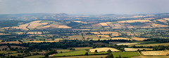 Toasted Fields ! (DP the snapper) Tags: shropshire panorama brownclee wenlockedge