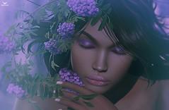 Kryss~Purple.. (Skip Staheli *FULLY BOOKED*) Tags: skipstaheli secondlife sl avatar virtualworld dreamy digitalpainting portrait closeup closedeyes purple romantic berries eyesshut sweet kryssholmer