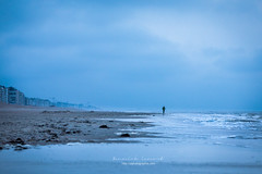 wandering (ylemort) Tags: sea beach surfing people wave nature outdoors sport water coastline surfboard sand blue sky vacations surf men traveldestinations sunlight sunset everypixel koksijde canon canon5dmkiv cloudsky
